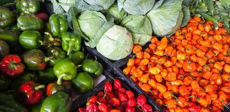 élelmiszer kereskedelem